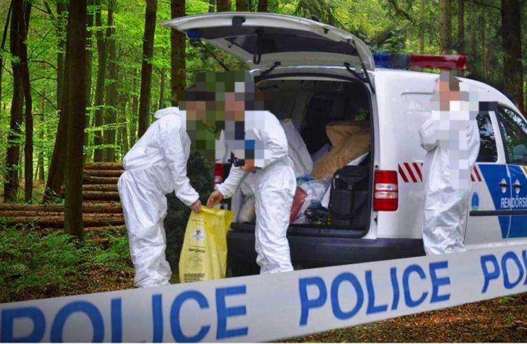Titokzatos holttestet találtak az M5-ös autópálya mellett…